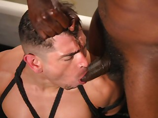 Gay interracial BDSM hardcore sex relating to frequently of dick sucking